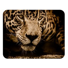 Jaguar Water Stalking Eyes Double Sided Flano Blanket (large)