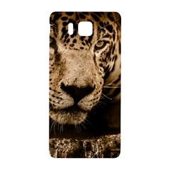 Jaguar Water Stalking Eyes Samsung Galaxy Alpha Hardshell Back Case by BangZart