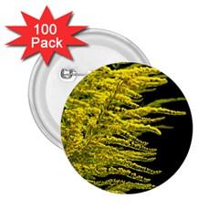 Golden Rod Gold Diamond 2 25  Buttons (100 Pack)  by BangZart