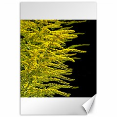 Golden Rod Gold Diamond Canvas 20  X 30