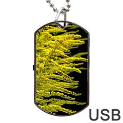 Golden Rod Gold Diamond Dog Tag Usb Flash (one Side) by BangZart