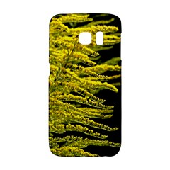 Golden Rod Gold Diamond Galaxy S6 Edge