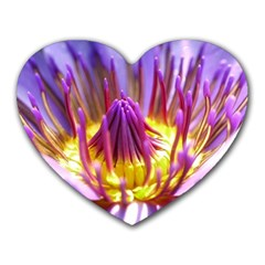 Flower Blossom Bloom Nature Heart Mousepads