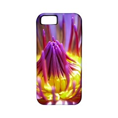 Flower Blossom Bloom Nature Apple Iphone 5 Classic Hardshell Case (pc+silicone) by BangZart