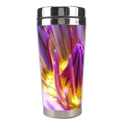 Flower Blossom Bloom Nature Stainless Steel Travel Tumblers