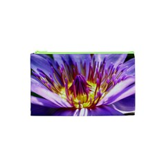 Flower Blossom Bloom Nature Cosmetic Bag (xs)