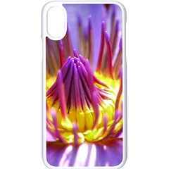 Flower Blossom Bloom Nature Apple Iphone X Seamless Case (white)