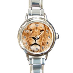 Africa African Animal Cat Close Up Round Italian Charm Watch