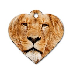 Africa African Animal Cat Close Up Dog Tag Heart (one Side)