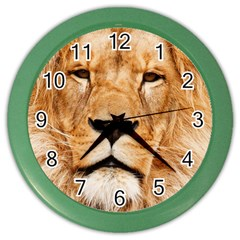 Africa African Animal Cat Close Up Color Wall Clocks