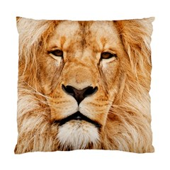 Africa African Animal Cat Close Up Standard Cushion Case (one Side) by BangZart