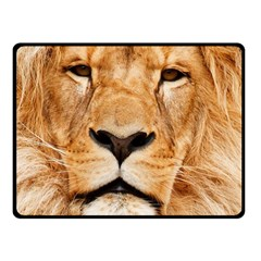 Africa African Animal Cat Close Up Fleece Blanket (small)