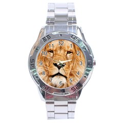 Africa African Animal Cat Close Up Stainless Steel Analogue Watch