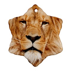 Africa African Animal Cat Close Up Snowflake Ornament (two Sides)
