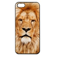 Africa African Animal Cat Close Up Apple Iphone 5 Seamless Case (black)