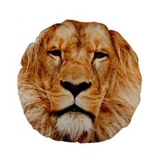 Africa African Animal Cat Close Up Standard 15  Premium Flano Round Cushions