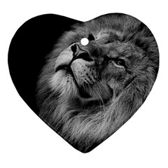 Feline Lion Tawny African Zoo Ornament (heart)