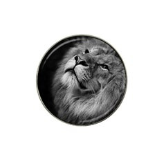 Feline Lion Tawny African Zoo Hat Clip Ball Marker (4 Pack)