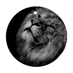 Feline Lion Tawny African Zoo Round Ornament (two Sides) by BangZart