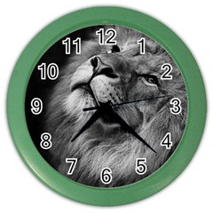 Feline Lion Tawny African Zoo Color Wall Clocks