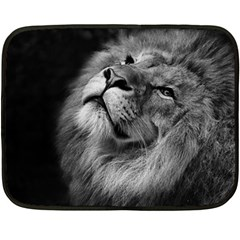 Feline Lion Tawny African Zoo Double Sided Fleece Blanket (mini)