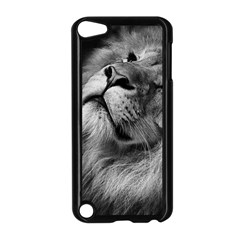 Feline Lion Tawny African Zoo Apple Ipod Touch 5 Case (black)