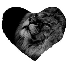 Feline Lion Tawny African Zoo Large 19  Premium Heart Shape Cushions