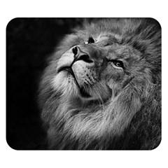 Feline Lion Tawny African Zoo Double Sided Flano Blanket (small)  by BangZart