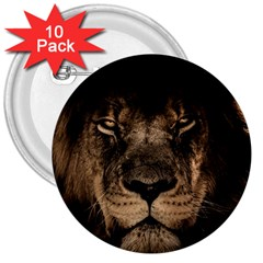 African Lion Mane Close Eyes 3  Buttons (10 Pack)