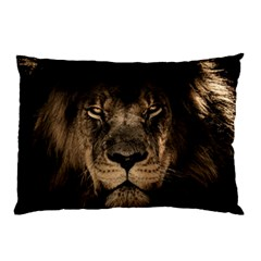 African Lion Mane Close Eyes Pillow Case by BangZart
