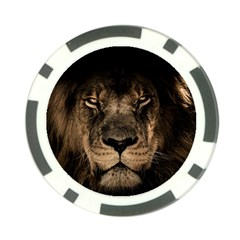 African Lion Mane Close Eyes Poker Chip Card Guard (10 Pack)