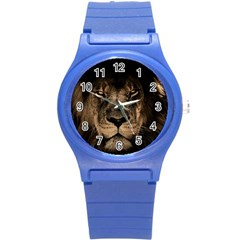 African Lion Mane Close Eyes Round Plastic Sport Watch (s)