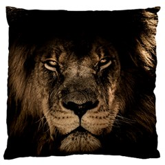African Lion Mane Close Eyes Standard Flano Cushion Case (two Sides)