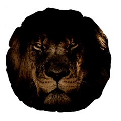 African Lion Mane Close Eyes Large 18  Premium Flano Round Cushions