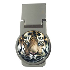 Tiger Bengal Stripes Eyes Close Money Clips (round)