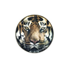 Tiger Bengal Stripes Eyes Close Hat Clip Ball Marker (10 Pack) by BangZart