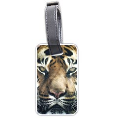 Tiger Bengal Stripes Eyes Close Luggage Tags (one Side)