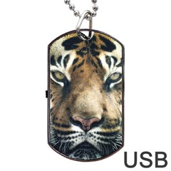 Tiger Bengal Stripes Eyes Close Dog Tag Usb Flash (two Sides)