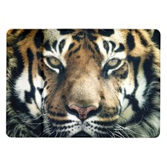 Tiger Bengal Stripes Eyes Close Samsung Galaxy Tab 10 1  P7500 Flip Case