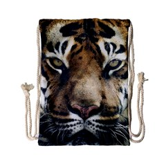 Tiger Bengal Stripes Eyes Close Drawstring Bag (small)