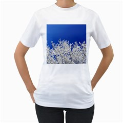 Crown Aesthetic Branches Hoarfrost Women s T Shirt (white) (two Sided)