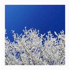 Crown Aesthetic Branches Hoarfrost Medium Glasses Cloth (2 Side)