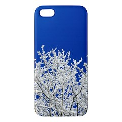 Crown Aesthetic Branches Hoarfrost Iphone 5s/ Se Premium Hardshell Case