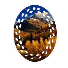 Colorado Fall Autumn Colorful Oval Filigree Ornament (two Sides)