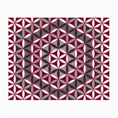 Flower Of Life Pattern Red Grey 01 Small Glasses Cloth (2 Side) by Cveti