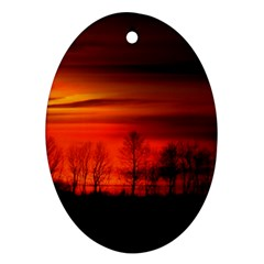 Tree Series Sun Orange Sunset Oval Ornament (two Sides)