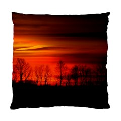 Tree Series Sun Orange Sunset Standard Cushion Case (one Side)