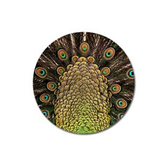 Peacock Feathers Wheel Plumage Magnet 3  (round) by BangZart