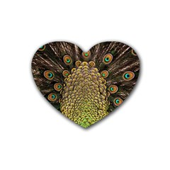 Peacock Feathers Wheel Plumage Heart Coaster (4 Pack)