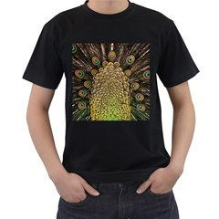 Peacock Feathers Wheel Plumage Men s T Shirt (black)